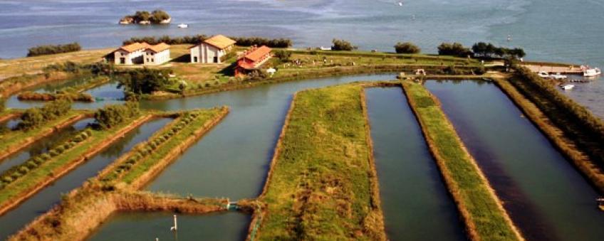 Италия продает два острова